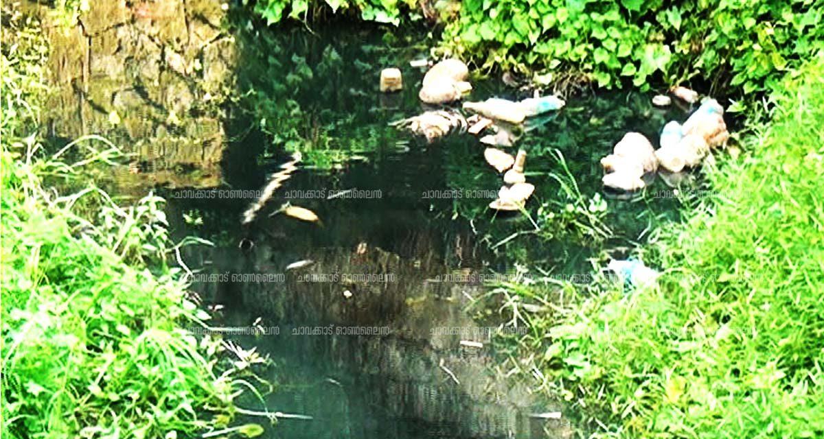 മാണിക്യത്തുപടിയില്  സെപ്റ്റിക് ടാങ്ക് മാലിന്യം : 200-ഓളം കുടുംബങ്ങള് ദുരിതത്തില്
