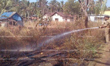 ബ്ളാങ്ങാട് ബീച്ചില് പുല്ലിനു തീപിടിച്ചു