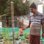 അഷറഫാണ് താരം :  ഫ്ലക്സുകള് ഗ്രോബാഗുകളായി പാതയോരം ഹരിതാഭമായി