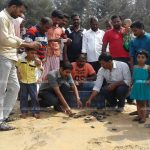 മന്ദലാംകുന്ന് ബീച്ചിൽ കടലാമക്കുഞ്ഞുങ്ങളെ കടലിലിറക്കി