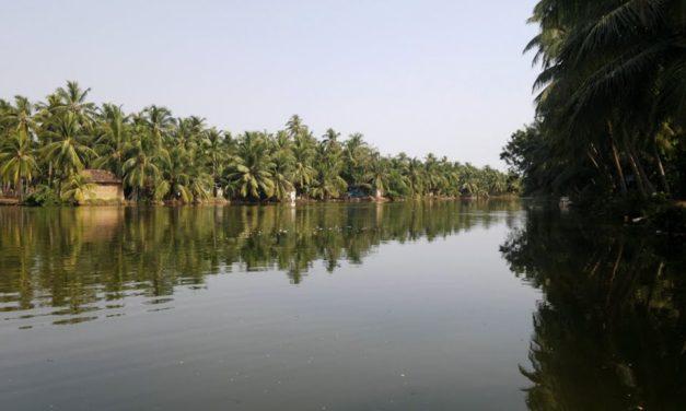 കനോലി കനാല് മാലിന്യ മുക്തമാക്കണം
