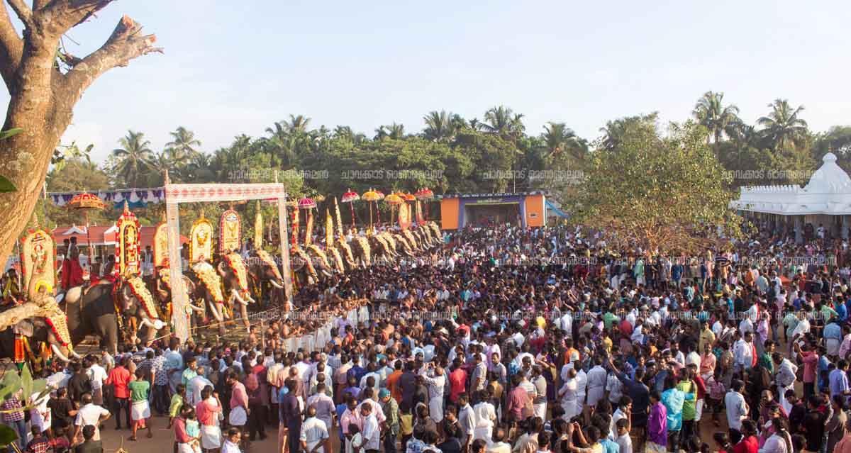 ചാവക്കാട് വിശ്വനാഥക്ഷേത്രോത്സവം വര്ണ്ണാഭമായി