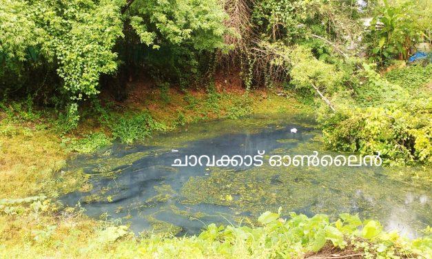 നാട്ടുകാർ ഉപയോഗിക്കുന്ന കുളത്തിൽ കക്കൂസ് മാലിന്യം