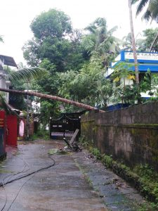 cyclone hit mammiyur